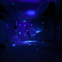 plastic sheet, rope, duct tape, cardboard, tonic water, uv- lights<br>